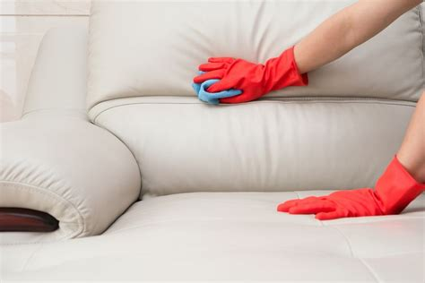 what to wipe leather couch with how to clean your house after it s been invaded by cold or