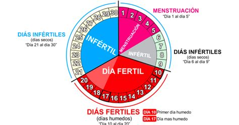 Ciclo Menstrual Calendario Calendario De Ciclo Menstruaci 211 N De Una Mujer Descarga