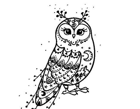 harry potter coloring pages owl dibujo de lechuza de invierno para colorear dibujos net