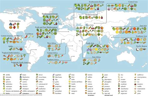 9780199399734 2 sources for patterns of world history interactive map shows where the world s food comes from