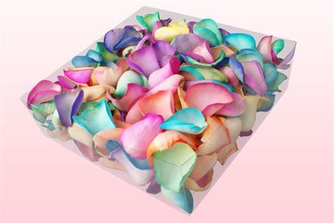 Box A Single Rainbow Multicolor Happy Preserved Flower freeze dried petals rainbow