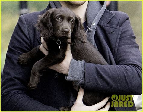 tom hiddleston puppy tom hiddleston carries adorable puppy in his arms in