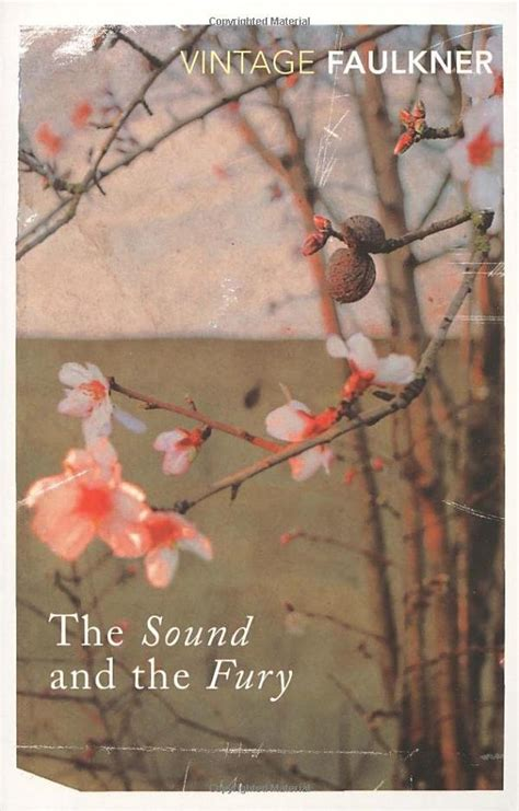 William Faulkner Yhe Sound And The Fury the sound and the fury william faulkner books