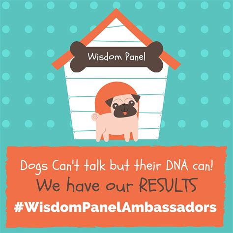 wisdom panel dna dogs can t talk but their dna can