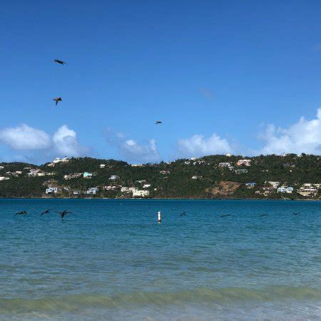 Mba Parks Magens Bay by Magens Bay All You Need To Before You Go U S