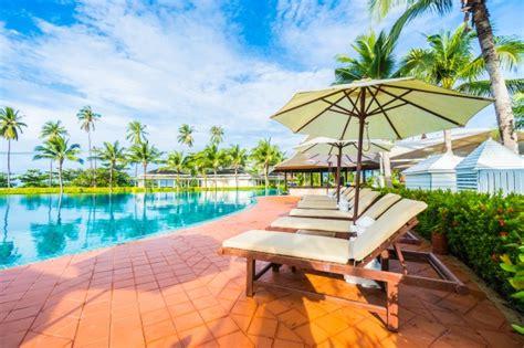 hamacas de piscina sombrilla y hamacas en una piscina descargar fotos gratis
