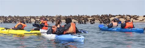 pelican boats zimbabwe kayaking pelican point kalahari breeze safaris