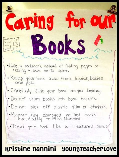after care a for the 40 books 17 best ideas about classroom library on
