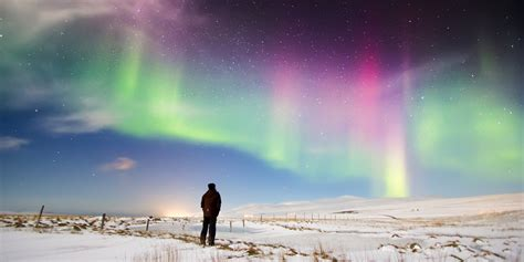 where are the best lights northern lights visible tonight in edmonton winnipeg halifax