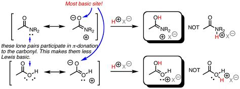 Protonated Carbonyl by Chemistry Of Aldehydes Ketones And Esters Key Concepts