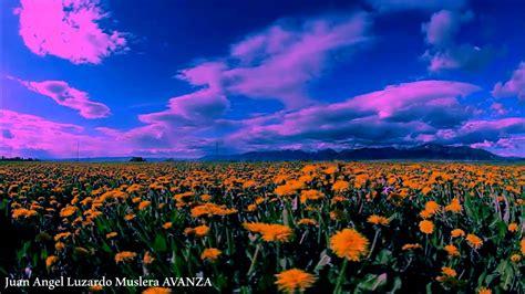 imagenes de paisajes bonitos con movimiento reflexiones de vida poema paisajes en movimiento hd