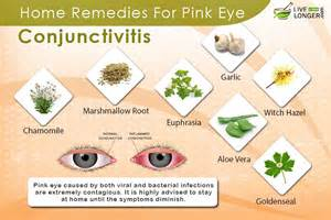 10 best home remedies for pink eye conjunctivitis