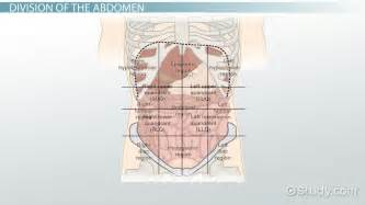Abdominal quadrants pictures to pin on pinterest