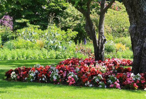 Flower Garden Houston Top 10 Shade Plants For Houston Kingwood Garden Center