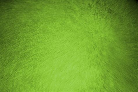 free green lime green fur texture picture free photograph photos