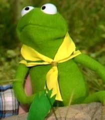 robin  frog voice muppets franchise   voice actors