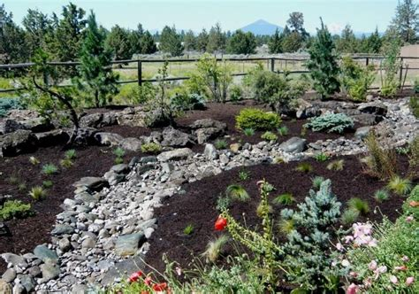 25 best ideas about high desert landscaping on