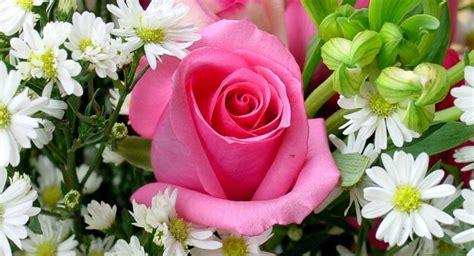 fiore it agnano in fiore mostra mercato e divertimento all ippodromo