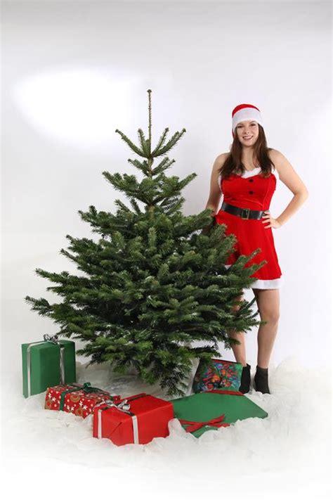 weihnachtsbaum kaufen frisch g 252 nstig direkt aus der
