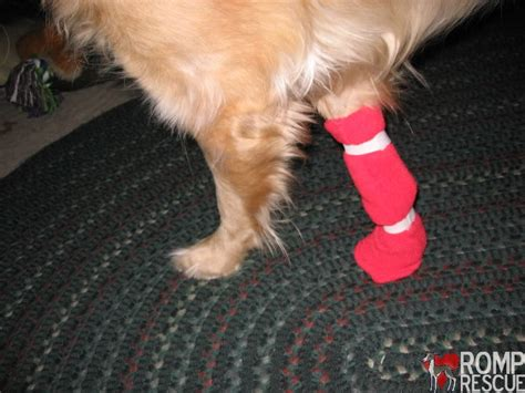 diy traction socks for dogs easy diy boots romp italian greyhound rescue
