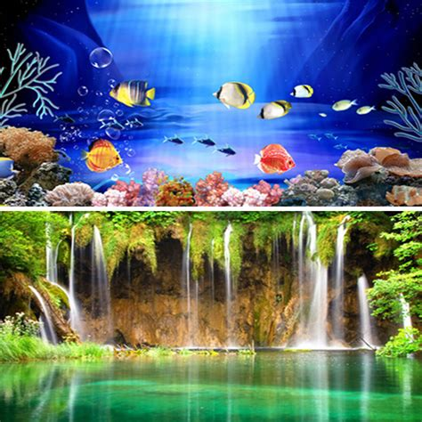 wow double sided aquarium poster background fish tank