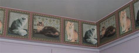 cat wallpaper borders murals cat wallpaper border cat decor pinterest