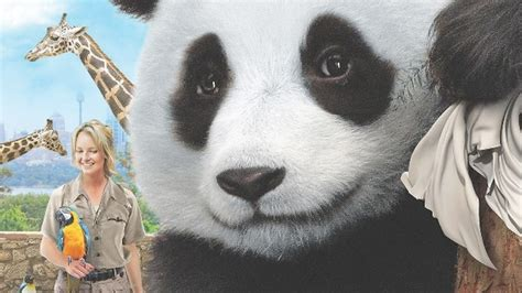 Sneezing Panda Meme - film d avventura anno 2014 mymovies it