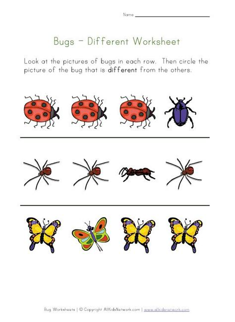 insects for kindergarten 31 best images about preschool bugs insects on