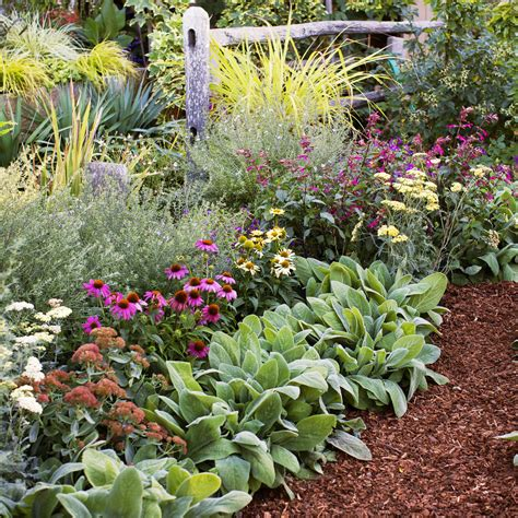 easy flower garden 4 easy care flower bed ideas sunset