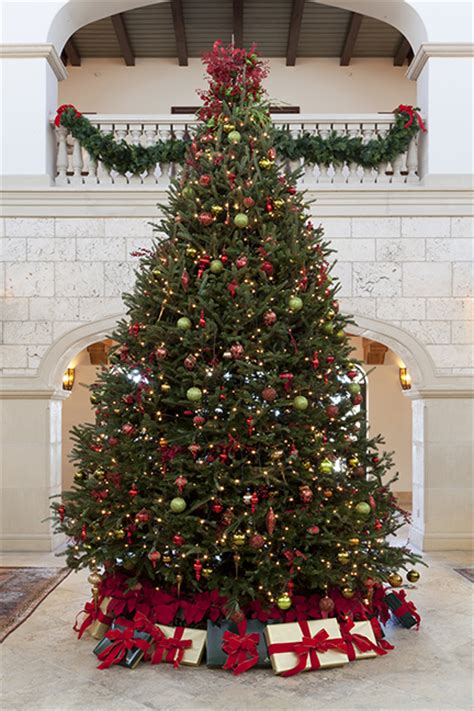 12 ft red christmas trees 12 trees of the cloister forbes travel guide stories