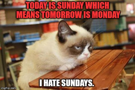 A Cat On A Sunday by Grumpy Cat Table Memes Imgflip