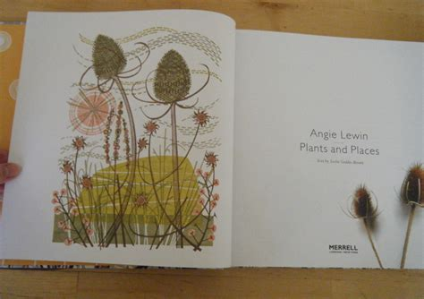 angie lewin plants and book review angie lewin plants and places emma block illustration