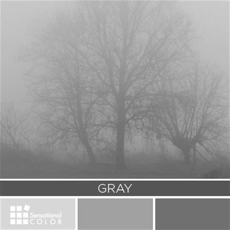 is gray a color all about the color gray sensational color