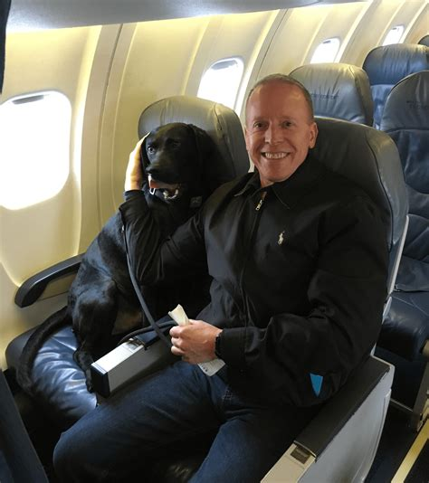 Can Dogs Fly In Cabin by Jake S On A Plane Air Travel With Your Pet Eric And Peety