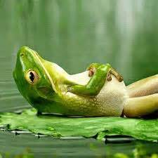 A Day Of Relaxation Thanks To Dorit by Water The Frog Does Not Drink Up The Pond In Which It