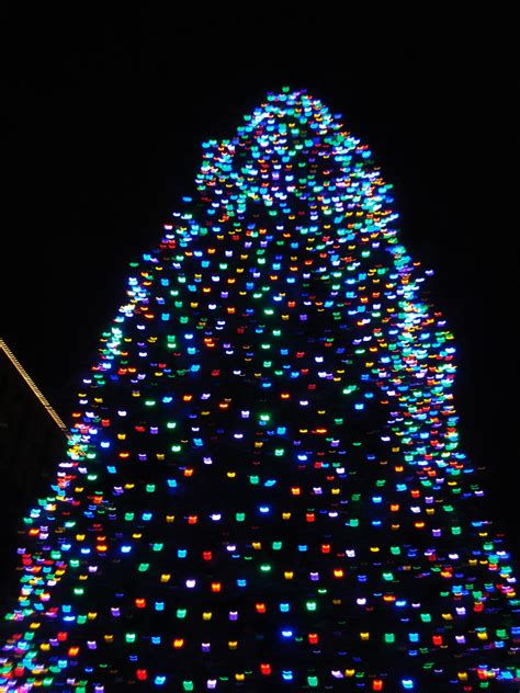 xmas tree with led lights roselawnlutheran