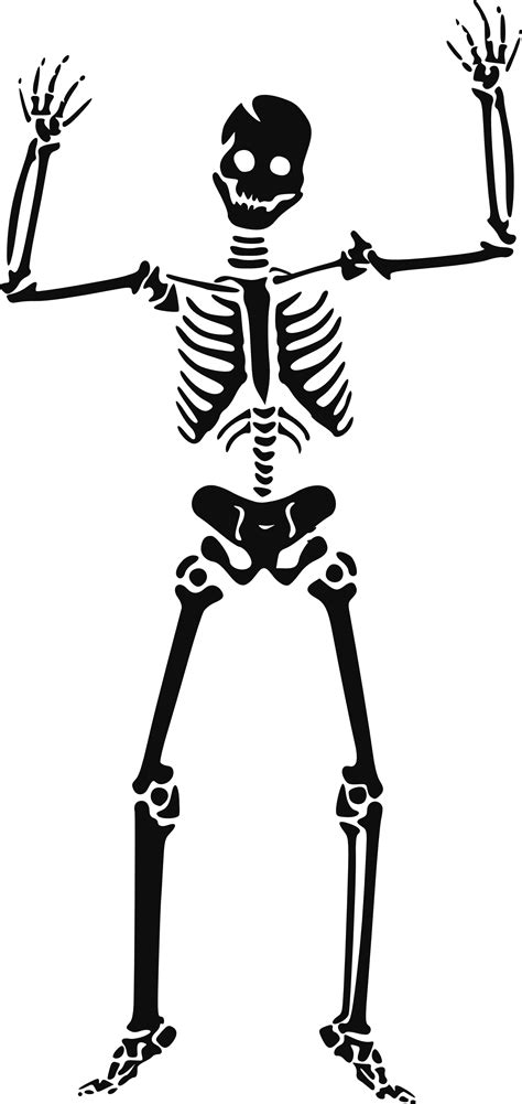 clipart for free free skeleton clip pictures clipartix