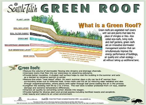 living roof seattle what is a green roof tilth alliance