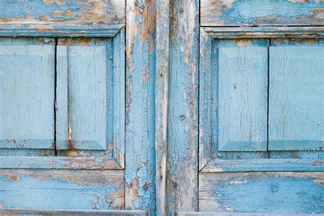 images  door tree wooden background wood