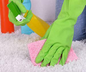 ottawa upholstery cleaning carpet cleaner ottawa carpet review