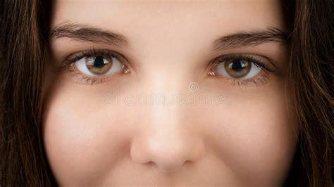 imagenes ojos pardos retrato del primer de la mujer joven con los ojos pardos