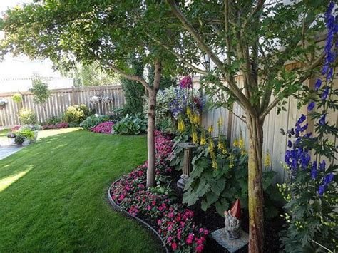 shade trees for small backyards 65 best images about privacy plants on pinterest fence