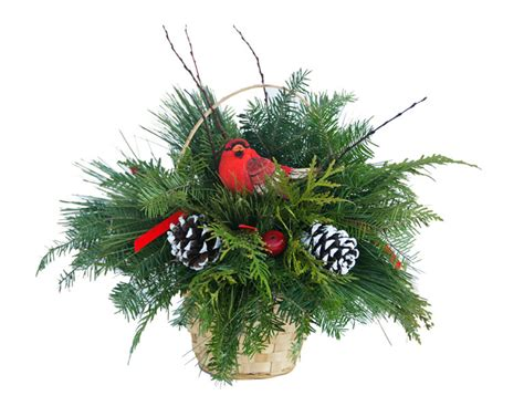 mail order live christmas cardinal centerpiece online