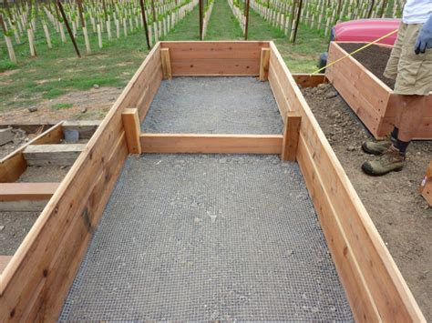 vegetable boxes for the garden savvy housekeeping 187 all about raised beds