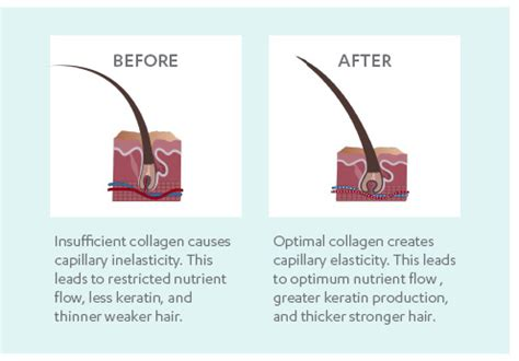 how to thicken hair roots thicker hair biosil