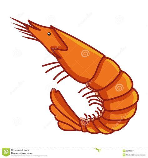 shrimp clip shrimp clipart clipart suggest