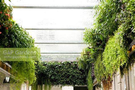 Vertical Garden Milan Gap Gardens Vertical Garden Milan Italy Image No