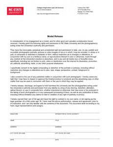 logo release form template brand assets and downloads nc state college