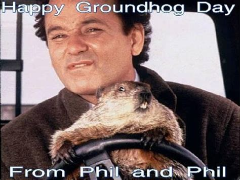 groundhog day keep the talent happy 1000 images about favorite on