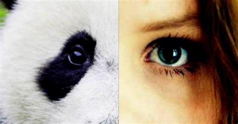 Wardah Untuk Mata Panda chocolate 5 tips menyingkirkan mata panda dalam waktu singkat